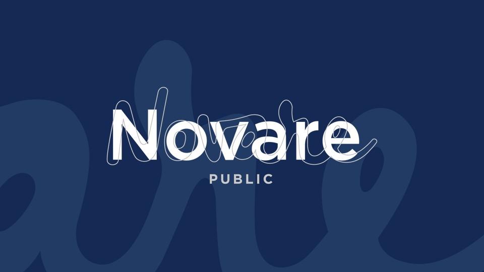 Novare Public blå logga